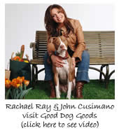 Ray Ray Visits Good Dog Goods